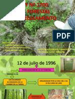 Ley Forestal (2)