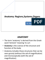 4 - Organs & Regions