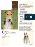 Fox Terrier Wire.vcpi
