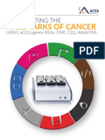 Hallmarks of Cancer Brochure
