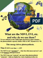 History of NDVI