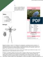 Cochonilha – Wikipédia, A Enciclopédia Livre