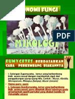 Materi Mikologi Taksonomi Fungi