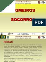 CTPS NR10 PSocorros Resumo