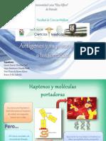 antgenosysupresentacinaloslinfocitos