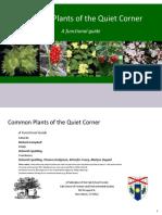 Plant ID guide.pdf