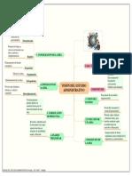 Vision Del Estudio Administrativo Organizacion