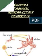 Hormonas Reproduccion y Desarrollo