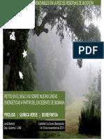 03 1 Energia de Biomasa Tcm7 307653