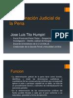 4067_determinaciondelapena.pdf