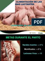 Cerdas Lactacion, 2013(1).pdf