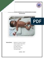 Incidencia de Sepsis Neonatal en El Departamento de Oruro Gestion 2016-1