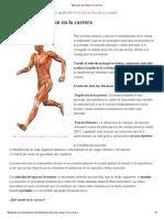 Músculos Que Actúan en La Carrera