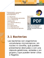 bacterias-121110021711-phpapp02.pptx