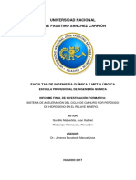 Proceso de Cianuricacion Imprimir