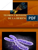 teoriacromosmicadelaherencia-140725162226-phpapp01