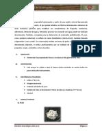 315861409-Ensayo-Del-Yeso.docx