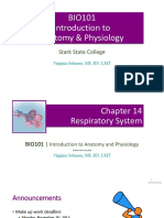 bio101 ch 14 respiratory system  e20909s conflicted copy 2016-04-21