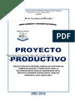 Proyecto Plantones-medio Ambiente