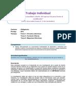 Guía y Rúbrica de Trabajo Individual (1)