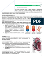 15 - Aparelho Circulatório - Medresumo