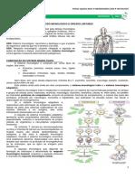 10 - Tecido Imunológico e Órgãos Linfoides - medresumos