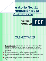 Laboratorio No. 11- Quimiotaxis-2016 (2)