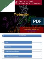 Trad RegulacionexpresionChi2017