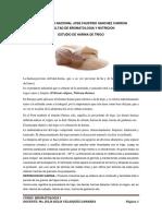 estudio de harina de trigo-2016-II.docx