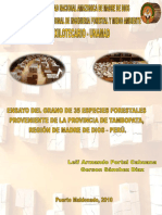 Ensayo Del Grano 35 Especies Forestales Madre Dios Peru 2