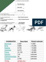 Invertebrados Clase 2a