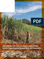 Variedades de Caña de Azúcar Empleadas Para La Agroindustria Panelera de Colombia