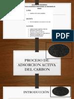 Carbon Activado.docx 1