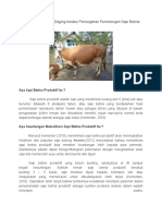 Menuju Swasembada Daging Melalui Pencegahan Pemotongan Sapi Betina Produktif