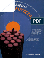 Piorun_Liderando-Proyectos