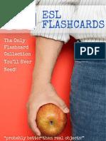 670-ESL-Flashcards-Manual.pdf