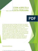 Produccion Agricola de La Costa Peruana
