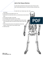 Human Skeleton Model Activity