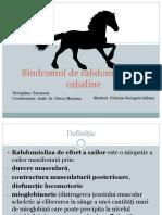 Sindromul de Rabdomioliza La Cabaline