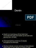 All About Dentin