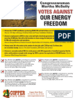 copper state rural - mcsally energy  flyer