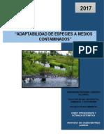 Especies Adaptadas a Medios Contaminados