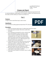 cheese lab report