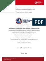 La Experiencia Del Programa Sierra Productiva en La Comunidad Campesina de Yanaoca-cusco