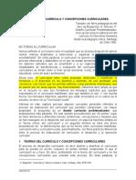Teorias Del Curriculo y Concepcionesmagendzo