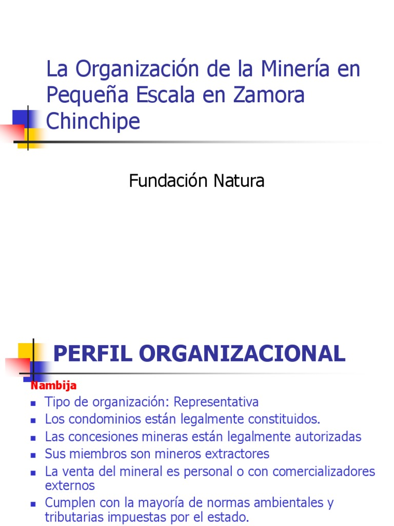 Natura Organizacion Mpe Zamora Ppt