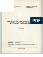 Exhibición Del Bovino en La Pista Del Juzgamiento