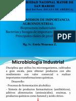 Clase 8va Microorganismos