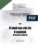 LIBRO II Derecho Laboral
