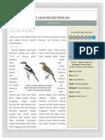 Sarjana Burung K5 Firman